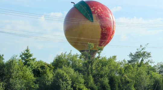 3 Guys and the Giant Peach